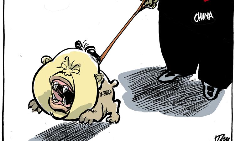 Con la scusa della Nord Corea